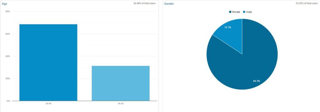 Google Analytics Demographics Board